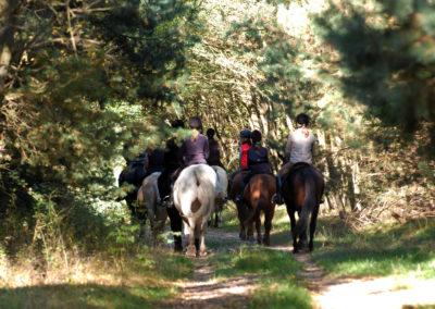 Paseos a caballo Una Vez en la Vida